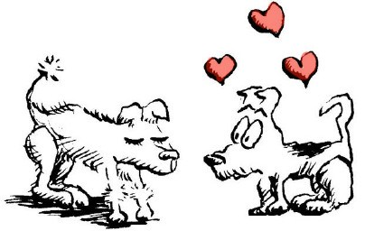 love_dogs.jpg